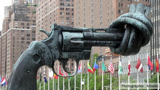 UN / Small Arms and Light Weapons : review conference of the programme of (...)